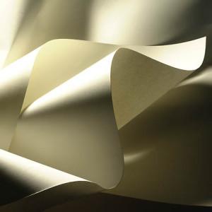 Difetto sotto il fiore macchia della carta
